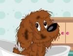لعبة تنظيف الكلب الصغير